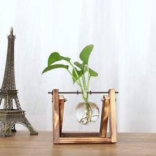 DIY Crystal Hydroponic Vase Flower Terrarium Container Hanging Tray 1 Beaker