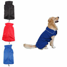 Vêtements et chaussures rouges unisexe pour chien
