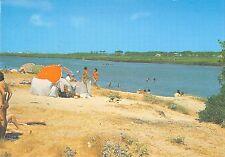 B96380 vagos paisagem da ria   portugal