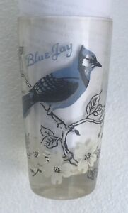 Vintage Blue Jay drinking glass, good condition