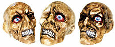 Rotted Haunted Skull Assortment Halloween Prop Skeleton Realistic Haunted House
