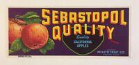Vintage Sebastopol Quality Apples Original Fruit Crate Label Graton, California