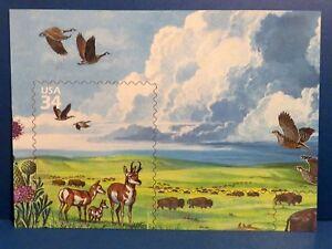 "Great Plains Prairie Stamp Sheet Detail, 2001 USPS 5""x7"" Postcard, Enton NE"