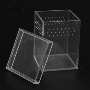 Acrylic Reptile Tank Terrarium Insect Spiders Lizard Breeding Box House Cage