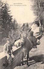 SCENES ET TYPES DES PYRENEES 2012 en route pour la ville âne timbrée