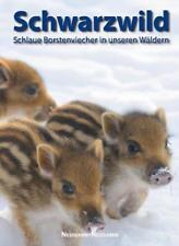 Schwarzwild (2011, Gebundene Ausgabe)