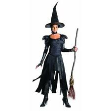 Oz the Great & Powerful Wicked Witch Costume Teen Size 2-6 Black No Hat #N109