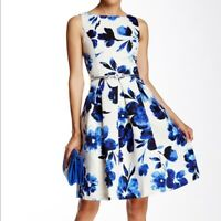 Eliza J Sleeveless Floral Pleated Belt Flare Dress Size 4