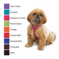 Nylon Dog Puppy Harness - Zack & Zoey - Adjustable - 4 Sizes 9 Colors