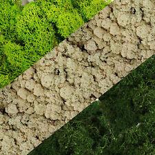 Green Natural Moss Reindeer Norwegian Preserved Moss Fresh Wreath Decoration DIY