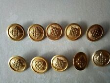 Croatian army 10 Military Uniform Buttons - large