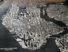 """Vintage New York in Aerial Views by William Fried ART Poster 32"""" x 22"""""""