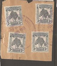 Gilbert & Ellice 1911 2d Tree SG 10 x 4 on piece see cancel VFU (6aua)