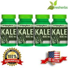 4-PACK KALE 4:1 EXTRACT 800 MG VEGETABLE DIETARY SUPPLEMENT PILLS 240 CAPSULES