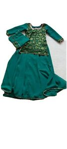 Womens Indian Party Dress (Lehnga - Adult Size 38) - Only worn once!