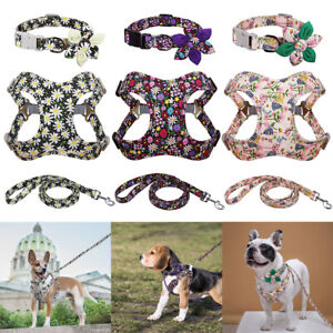 Floral Printed Nylon Step in Dog Harness & Collar & Leash Set with Big Flower