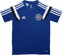adidas DBU Youths Short Sleeve Top Junior Boys Football Training T-Shirt Denmark