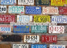 License Plate Backdrop for Photography - Item 1478 - 5ft x 5ft Vinyl