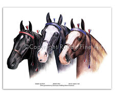 3 Famous Tennessee Walker Walking Horses stallions portraits Art signed Rohde