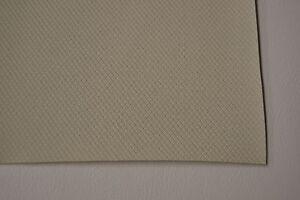 1965 65 1966 66 CHEVROLET BISCAYNE 2 DOOR SEDAN OFF WHITE TIER GRAIN HEADLINER