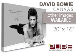 "DAVID BOWIE COMMEMORATIVE CANVAS WALL ART 20"" X 16"""