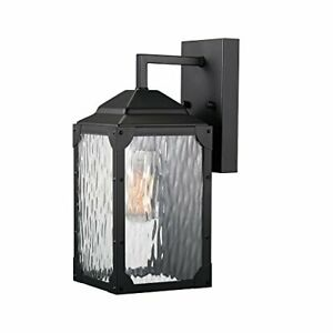 """Miller 13"""" 1-Light Outdoor Wall Sconce Black Finish Clear Watered Glass Shade"""