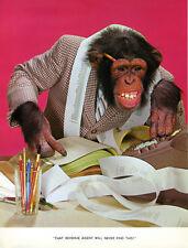 1 Vintage Art Photo Page Chimp Chat Book 1960/'s Makeup Diva Lipstick Beauty Lip
