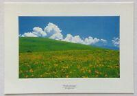 Nikkokisuge Kiriamine Postcard (P326)