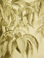 Limited edition drypoint etching pencil signed; T. Hagiwara