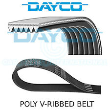 Dayco Poly V Belt - Auxiliary, Fan, Drive, Multi-Ribbed Belt - 6 Ribs - 6PK1200