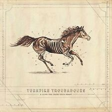 Turnpike Troubadours - A Long Way From Your Heart [New CD]
