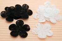 80 Black & White 1 1/4 Embossed Lace Flower Appliques Trim