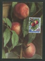 SAN MARINO MK 1958 FLORA FRÜCHTE PFIRSICHE FRUITS FRUIT MAXIMUM CARD MC CM d8105