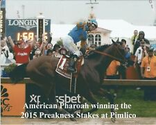 "2015 - AMERICAN PHAROAH winning the Preakness Stakes - 10"" x 8"""