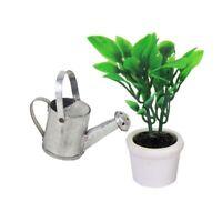 1/12 Dollhouse Miniature Garden Accessory Green Plant in White Pot Z3Q6