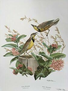Rare Vintage Richard Sloan Signed Print Eastern & Western Meadowlark Birds 1972