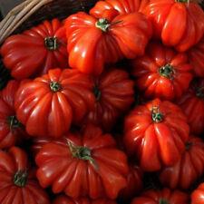 Hot Rare 50pcs Sweet Tomato Fruit Vegetable Seed Home Garden Plant Seeds Pop