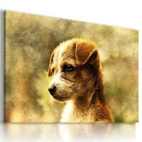 DOG PUPPIES Domestic And Wild Animals Canvas Wall Art Picture Large AN327 X