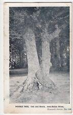 Hampshire; Double Tree, Oak & Beech, Nr Rufus Stone PPC, 1916 Lymington PMK