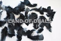30 Peacock sward feathers natural real for crafts small cruelty free 8-13in long