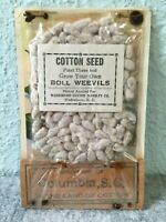 Columbia South Carolina Cotton Seed & Boll Weevils 1 Cent Wood Post Card Vintage