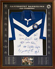 Blazed In Glory - 1995 Canterbury Bulldogs Premiers - NRL Signed & Framed Jersey