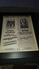 A-ha & Dream Academy Rare Original Radio Promo Poster Ad Framed!