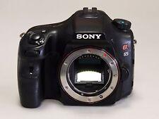 Sony Alpha slt-a65v 24.3 MP molto bella