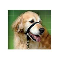 Dog Beaphar Halti Style Head Collar Stop | Pulling Halter Training Nose Reign UK