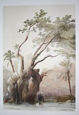 David Roberts 1849 H/C 1st Folio HOLY TREE OF METEREAH EGYPT