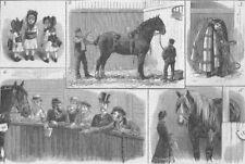 HORSES. Cart-Horse Show, Agricultural Hall, antique print, 1883