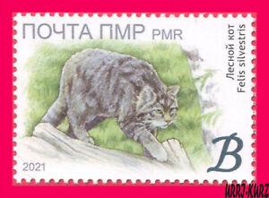 TRANSNISTRIA 2021 Nature Fauna Animals Mammals Wild Forest Cat 1v MNH