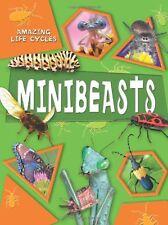Amazing Life Cycles: Minibeasts,George McGavin