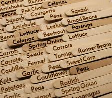 Laser engraved vegetable / allotment labels (for seeds) 29 Labels